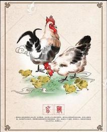 关于鸡的36棋牌游戏中心官方下载